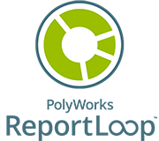 PolyWorks ReportLoop Software